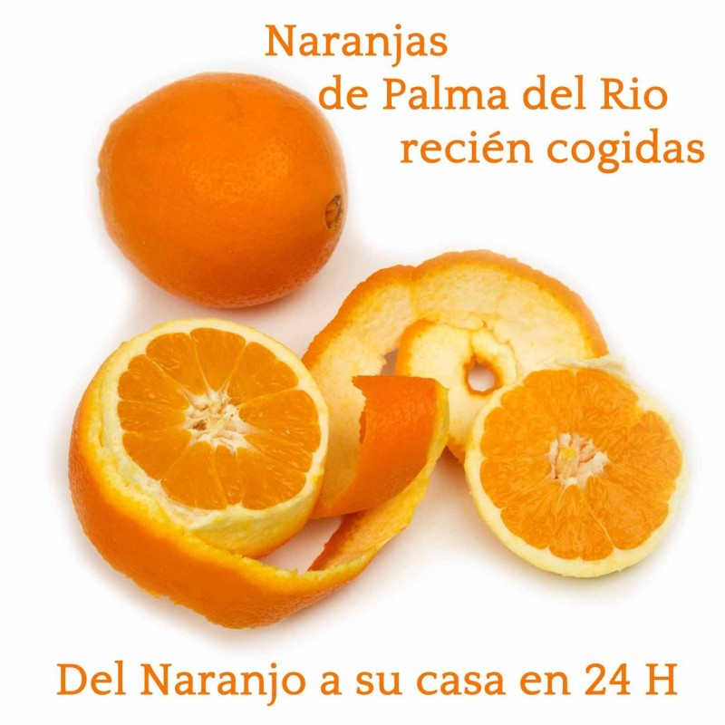 NARANJAS DE PALMA DEL RIO ON LINE